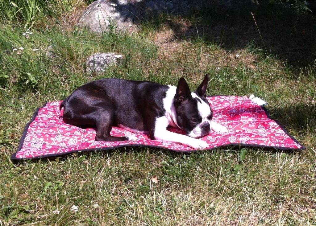 Catla cooling mat